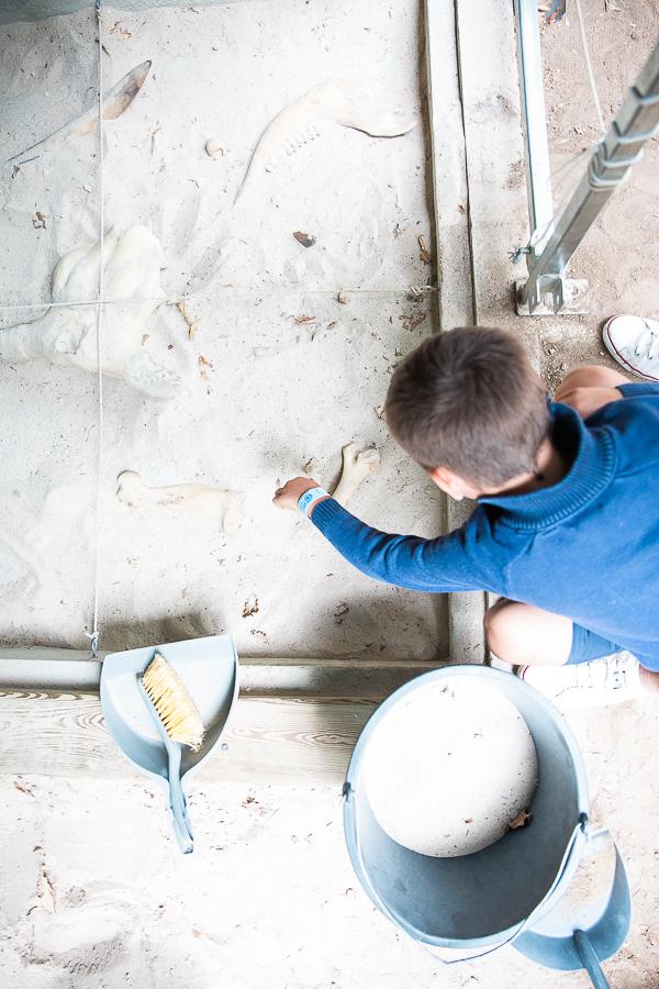Grotte du Cerdon : Atelier Fouille